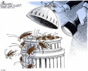 Congress roaches-2013